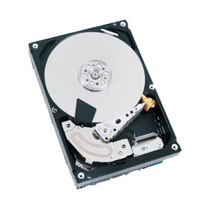 DT01ACA100 [1TB SATA600 7200]